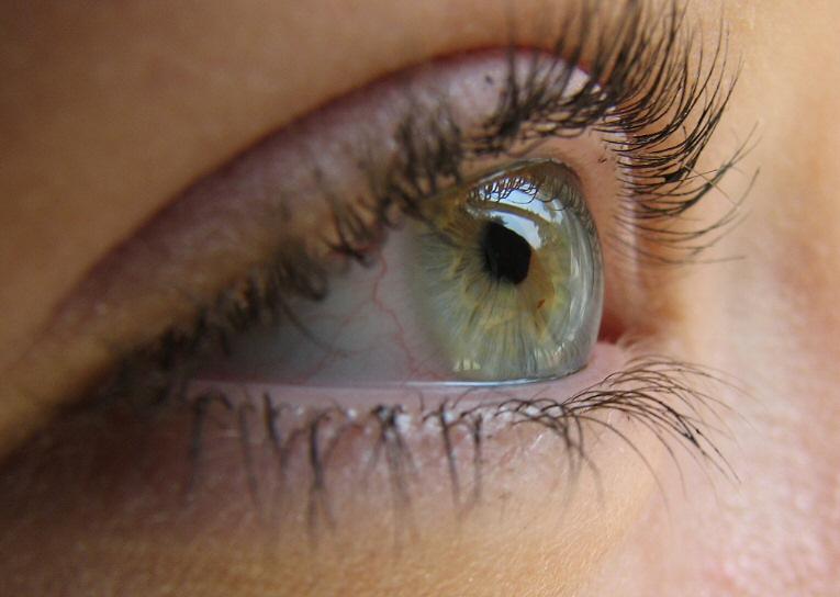 external image eyes.jpg